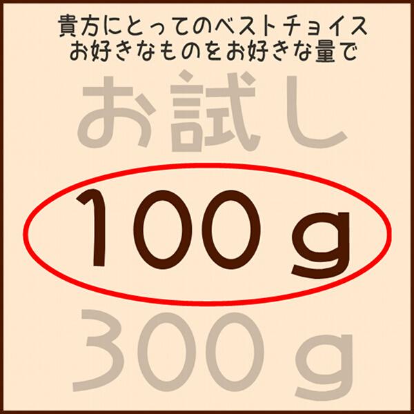 フクロモモンガフード 100g小分けパック 300gではちょっと多いなという方に