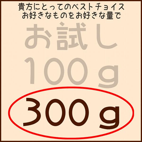 フクロモモンガフード 300g小分けパック 600gじゃちょっと多いなという方