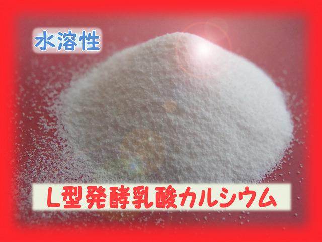 Anery L型発酵乳酸カルシウム〈モモンガ・ハリネズミ〉水溶性なので食感を損ねずカルシウム補給できます